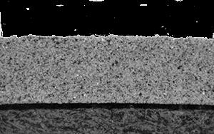 [Image: micrograph.png]